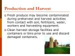 production and harvest