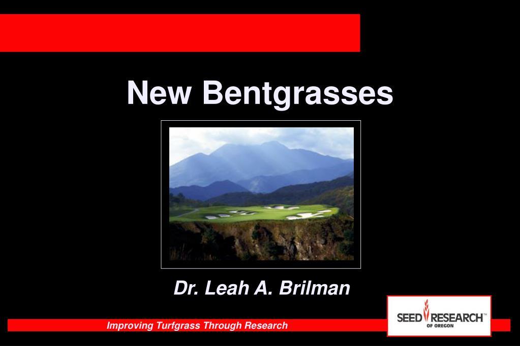 new bentgrasses l.