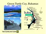 green turtle cay bahamas