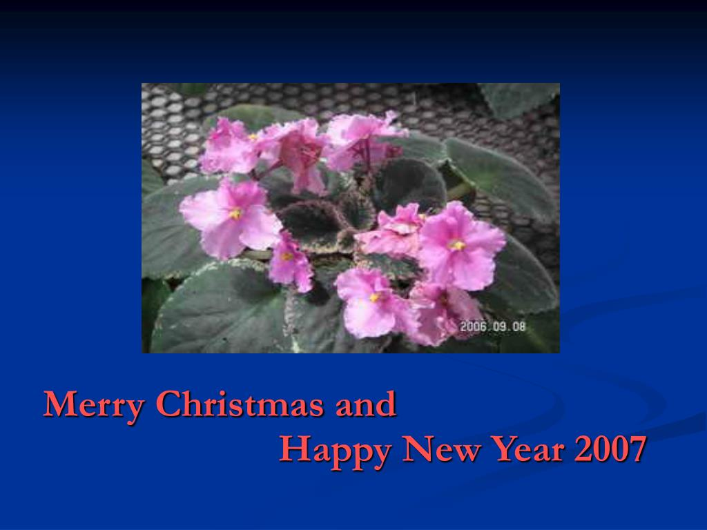 merry christmas and happy new year 2007 l.