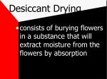 desiccant drying