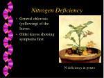 nitrogen deficiency