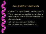 non fertilizer nutrients