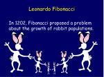 leonardo fibonacci4