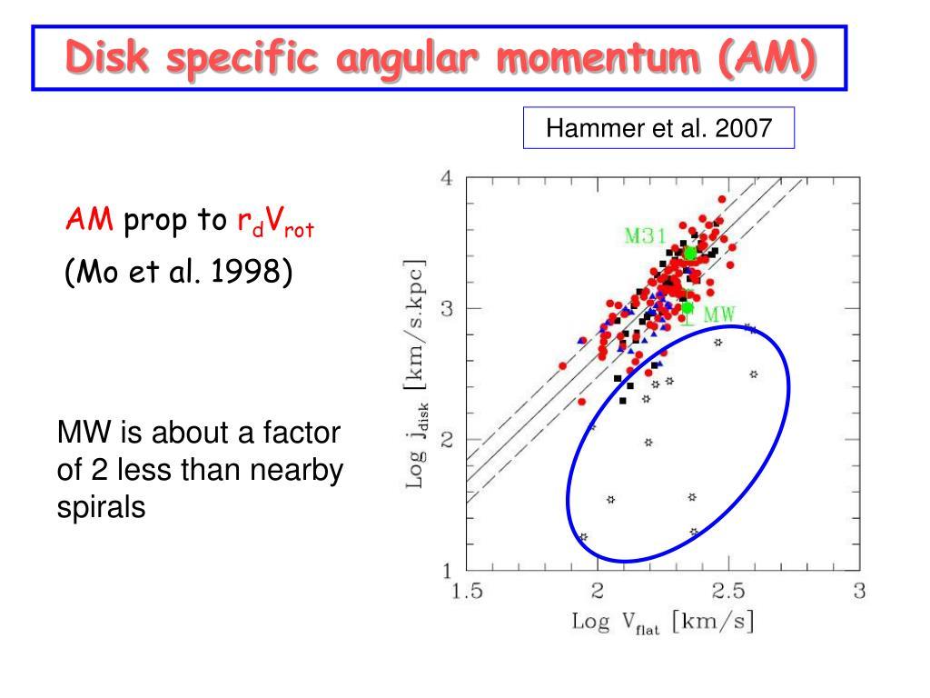 Disk specific angular momentum (AM)