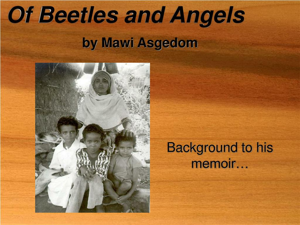 of beetles and angels by mawi asgedom l.