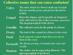 collective nouns that can cause confusion