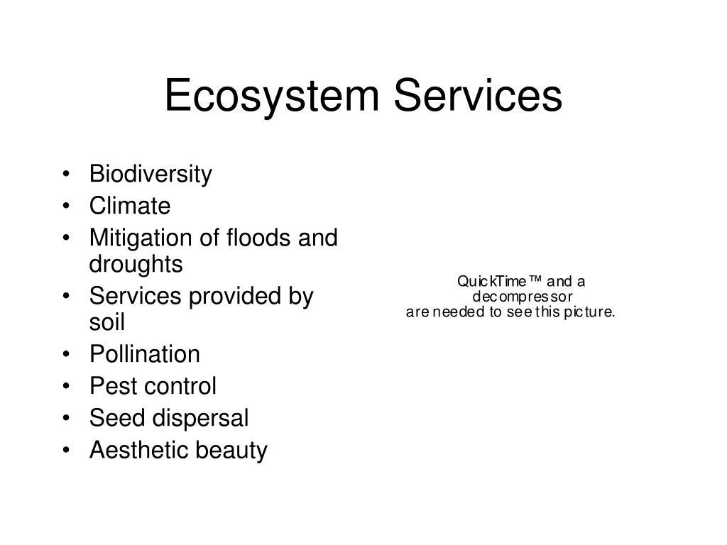 ecosystem services l.