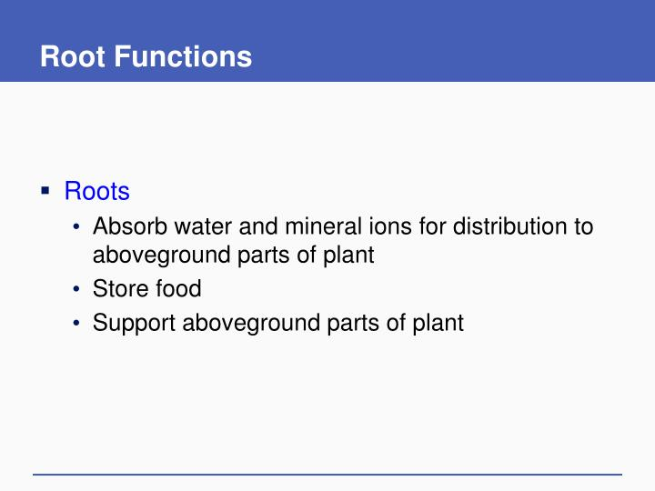 Root Functions