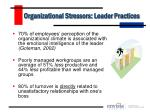 organizational stressors leader practices