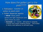 how does the pollen get to the pistil