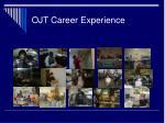 ojt career experience14
