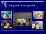 supported employment25