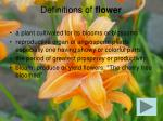 definitions of flower