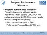 program performance measures31
