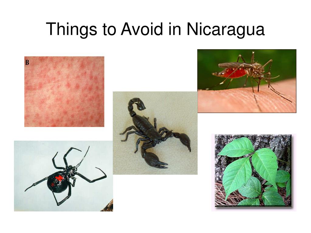 things to avoid in nicaragua l.