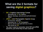 what are the 2 formats for saving digital graphics