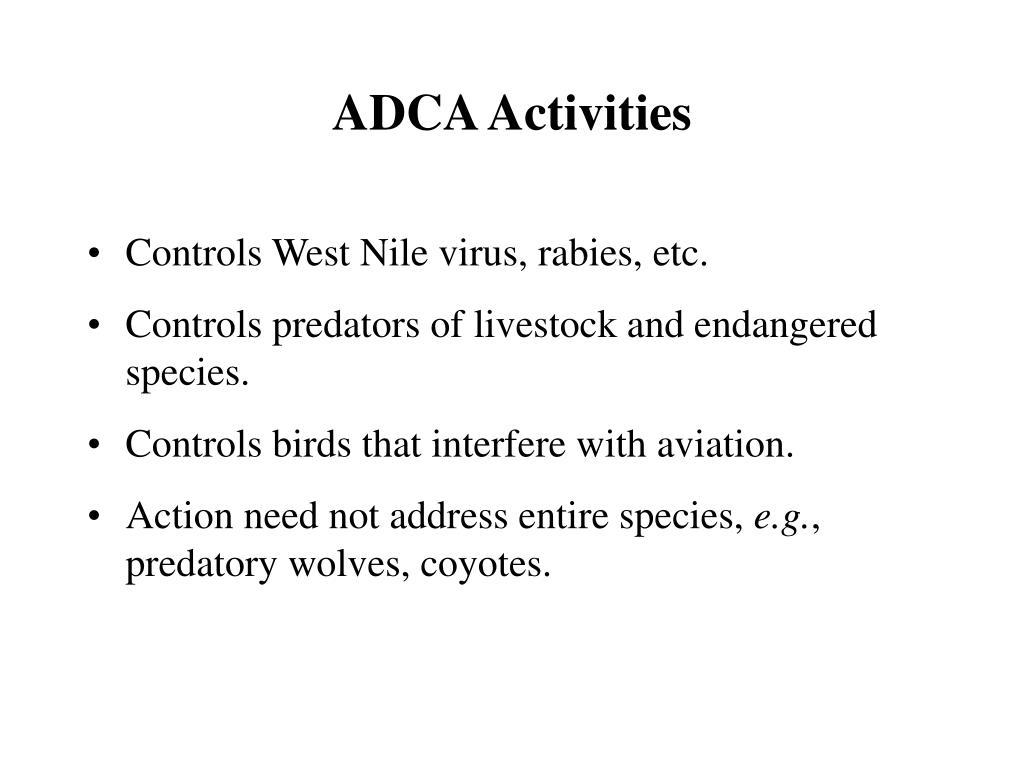 ADCA Activities