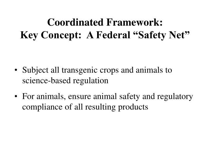 Coordinated framework key concept a federal safety net