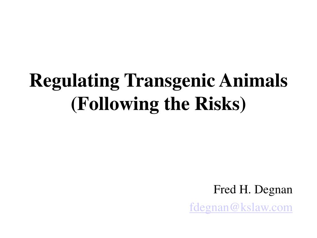 regulating transgenic animals following the risks l.