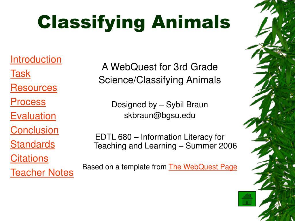 classifying animals l.