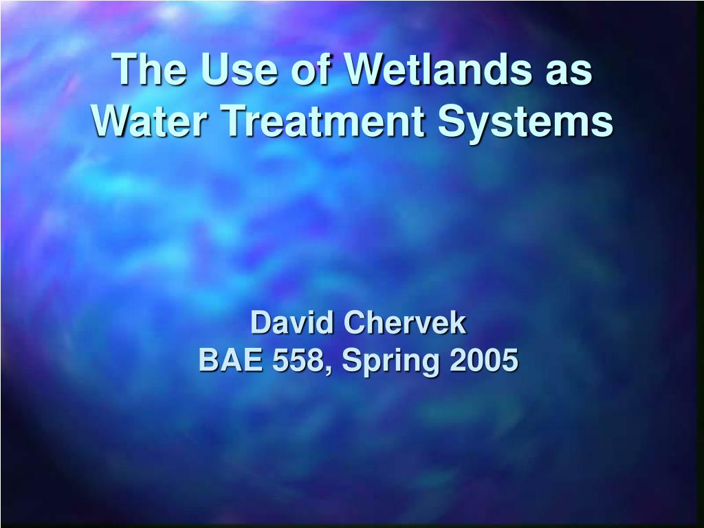 the use of wetlands as water treatment systems l.