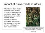 impact of slave trade in africa42