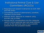 institutional animal care use committees iacucs