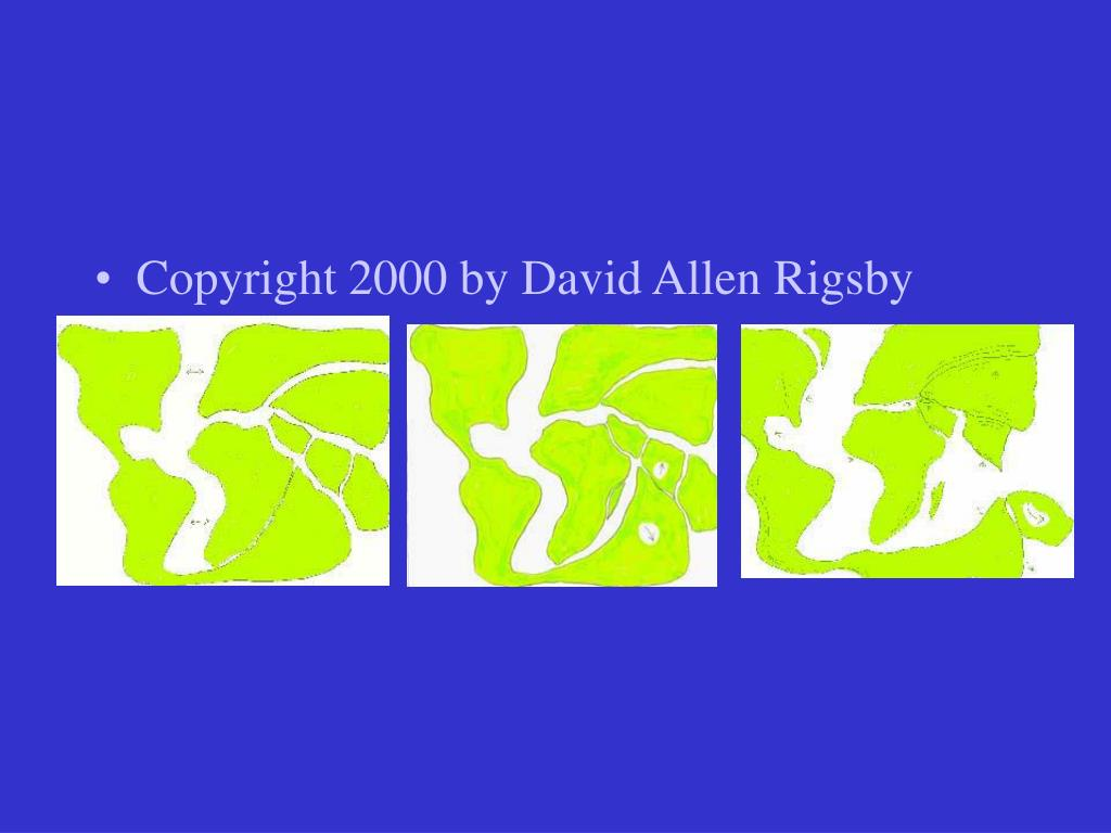 Copyright 2000 by David Allen Rigsby