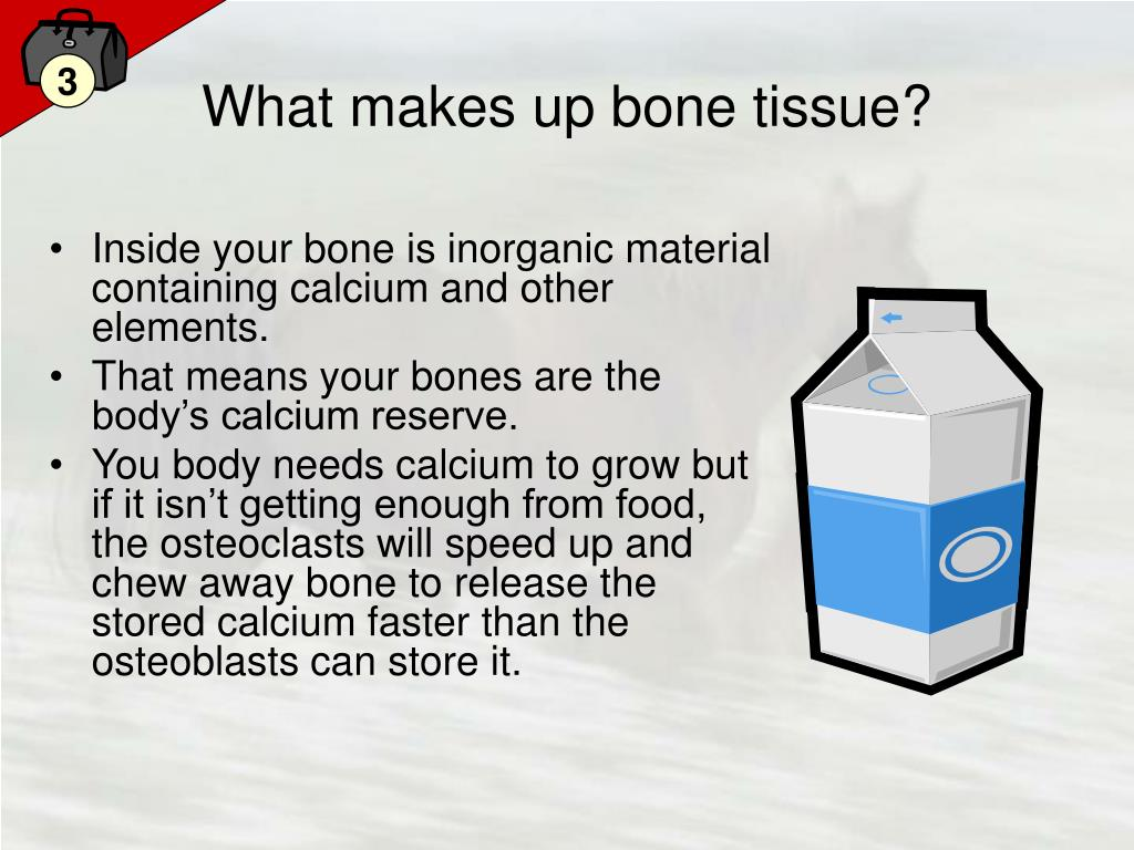 What makes up bone tissue?