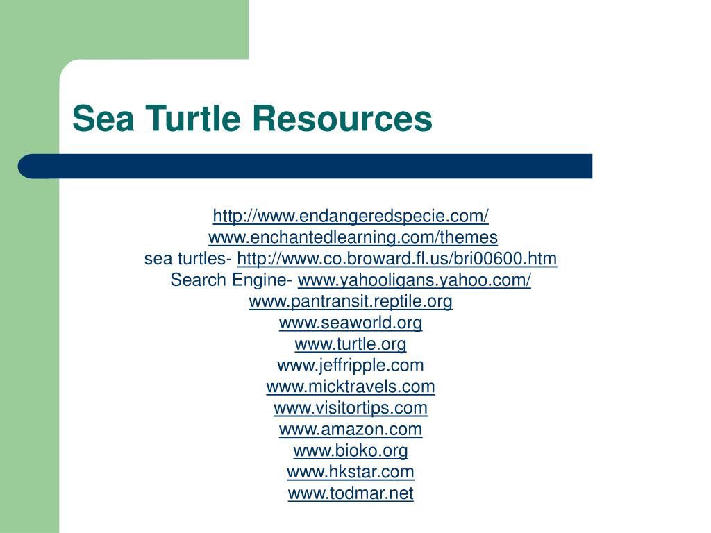 Sea Turtle Resources