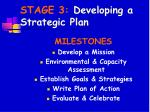 stage 3 developing a strategic plan