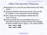 other file security measures