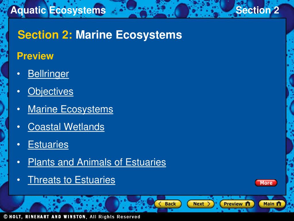 section 2 marine ecosystems l.