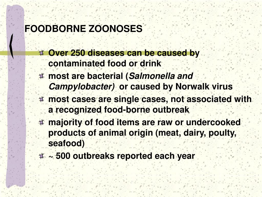 foodborne zoonoses l.