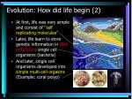 evolution how did life begin 2