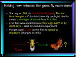 making new animals the great fly experiment