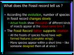 what does the fossil record tell us