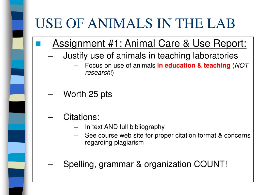USE OF ANIMALS IN THE LAB