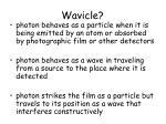 wavicle