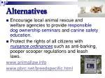 alternatives73