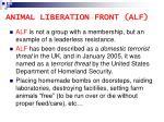 animal liberation front alf15