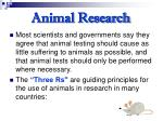 animal research28