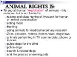 animal rights is