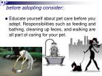 before adopting consider38