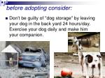 before adopting consider40