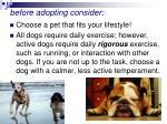 before adopting consider41