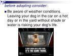 before adopting consider44