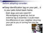 before adopting consider46