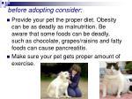 before adopting consider48